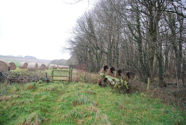 Footpath along the edge of Big Wood