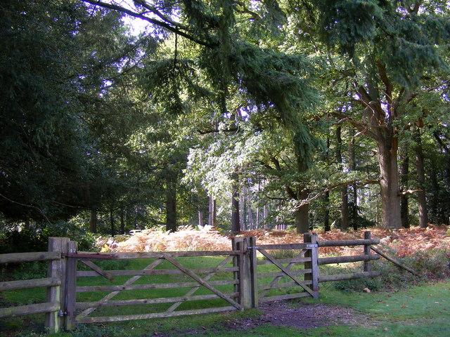 Wooden Gate into Amberwood Inclosure