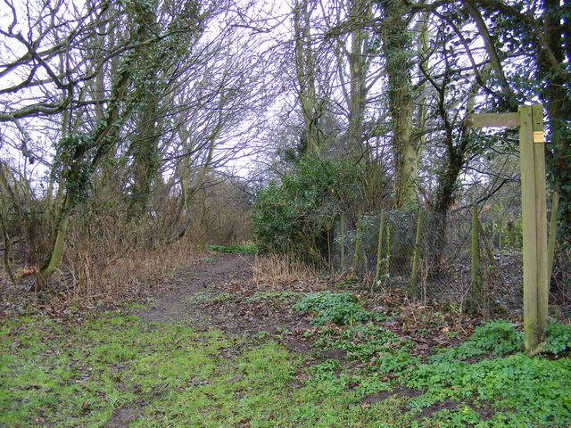 Footpath to Wash Road