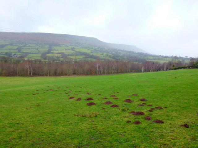 Edge of the Black Mountains