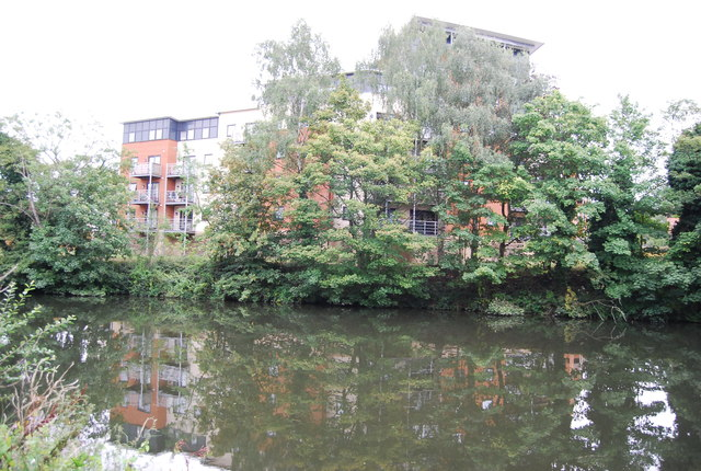New riverside development behind the trees