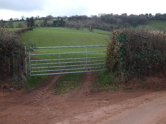 Fields west of Langdon Road