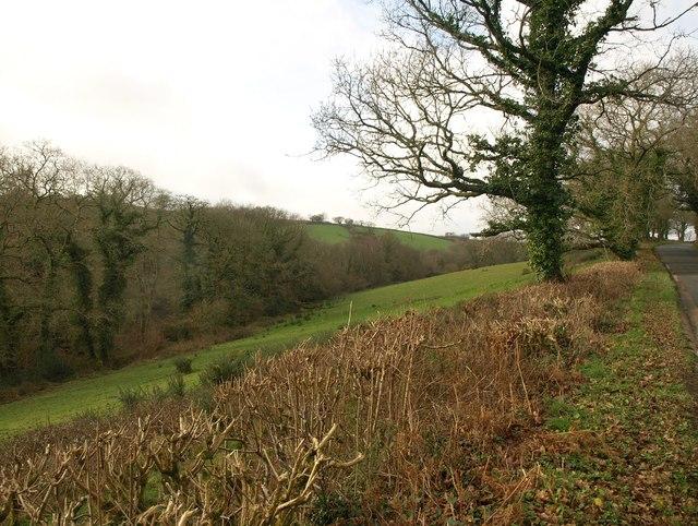 Steep field, Homing Down