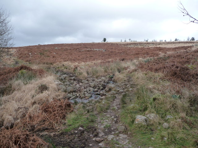 Path above Cilhepste-fach