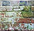 SU1610 : Benchmark, Blunts Barn by Jonathan Kington