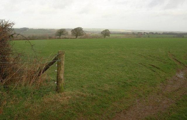 Field near Lambert Cross
