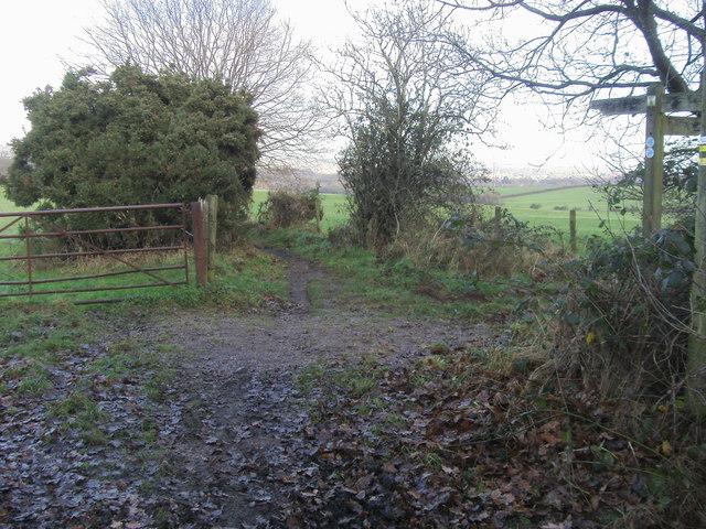 Footpath heading to Castle Lane