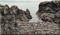 J4583 : The shore at Helen's Bay (2) by Albert Bridge