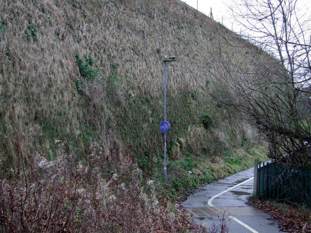 Path by Gipsy Lane