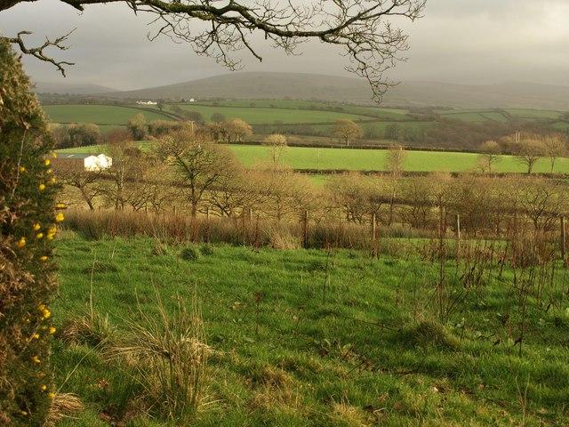 Farmland near Thorndon