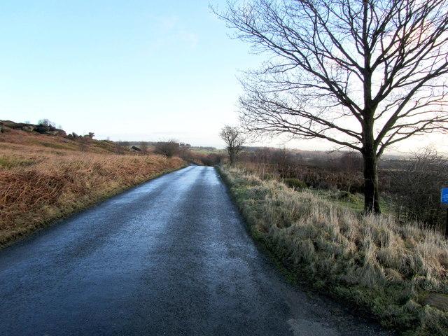 Road on Brimham Moor