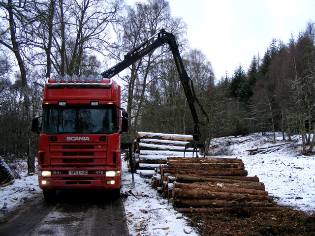 Logging at Hill of Dalnapot