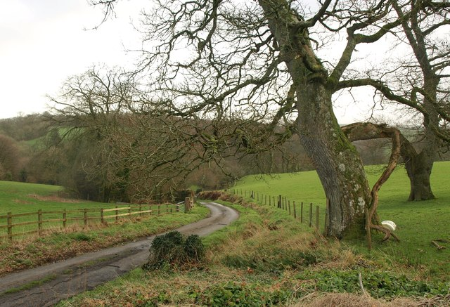 Lane into the Lew valley