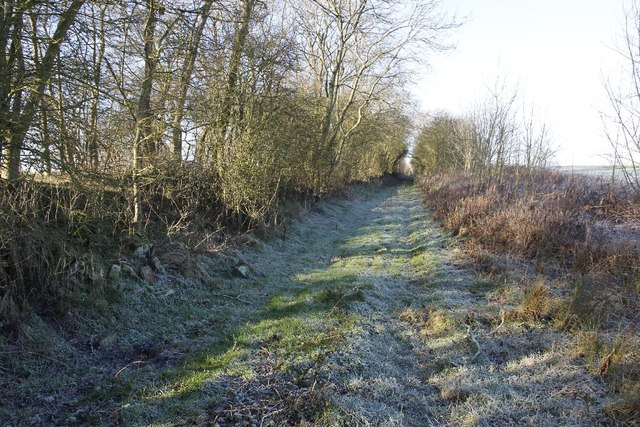 Approach to Salcey Forest railway station