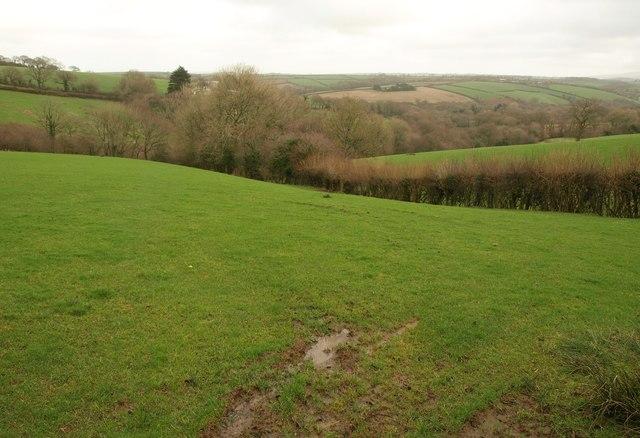 Pasture near Heath Moor