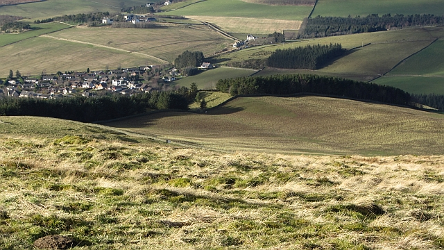 Slopes of Meigle Hill