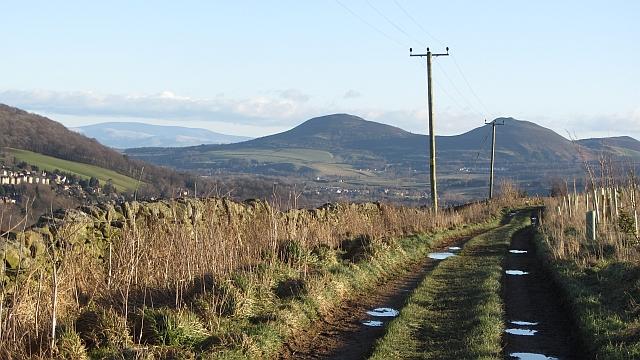Road on Meigle Hill