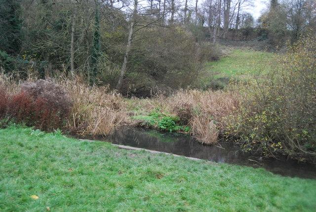 River Loose