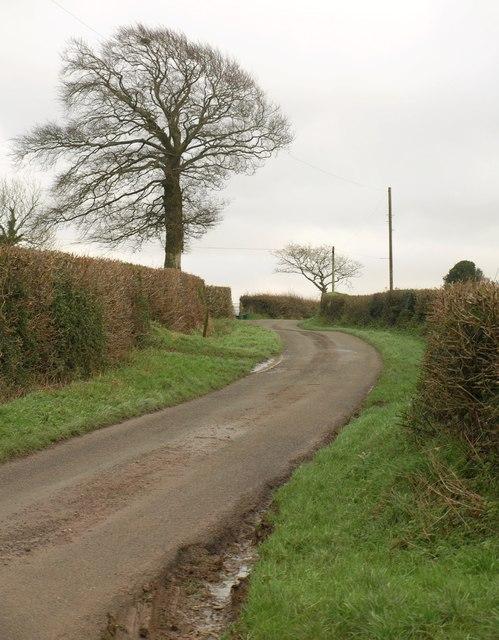 Lane near Cruft