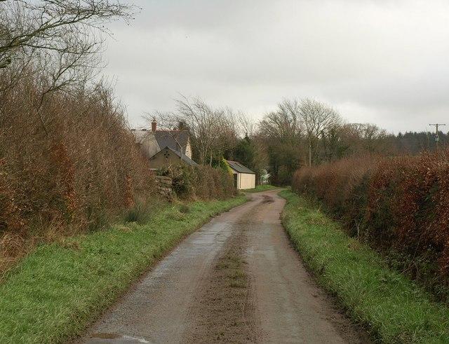 Lane past Cruft Gate