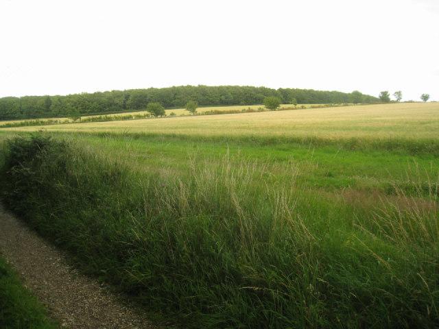 Farmland by Itchen Row