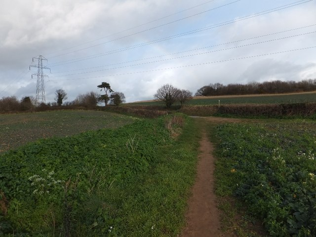 Footpath to Mamhead Road