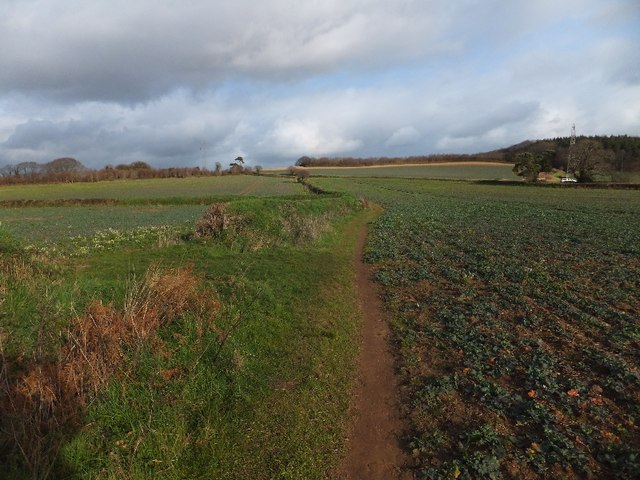 Footpath crossing fields near Mamhead Road