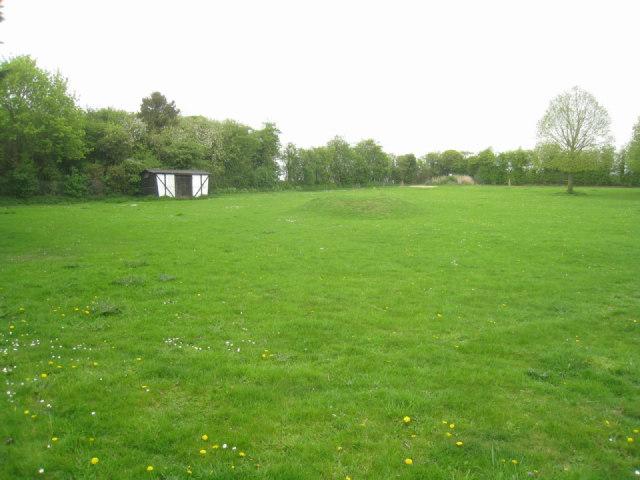 Field by Linton Zoo