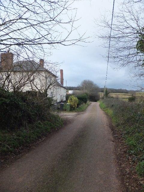 Road passing Oak Farm