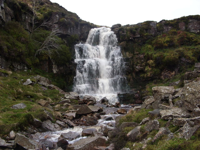 Bleaberry Force