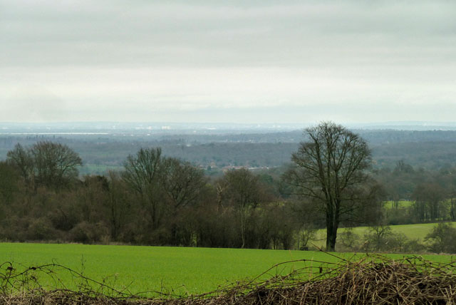 View from Staple Lane