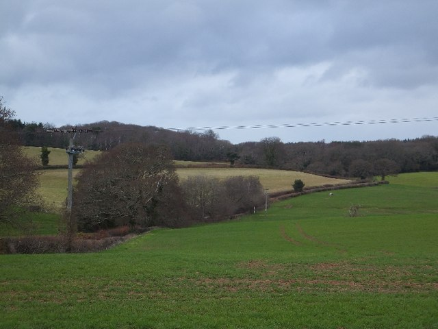 Fields bounding the road to Kennford