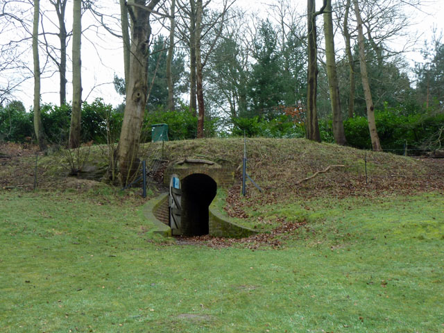 Ice house, Painshill Park
