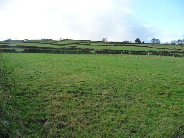 Farmland west of Shann Lane