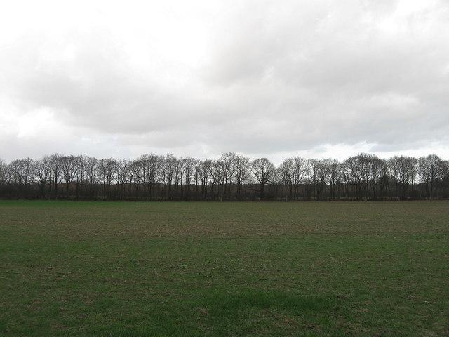 Further Moor