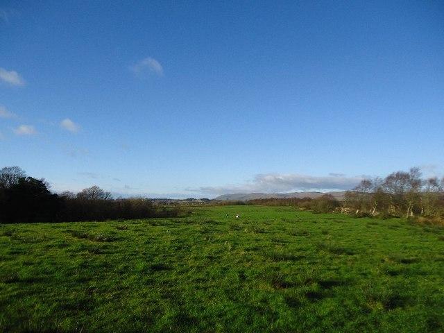 Castlecary Muir [2]