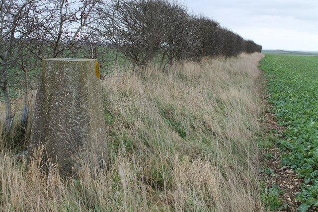 Triangulation Pillar S2083, near Welton le Wold