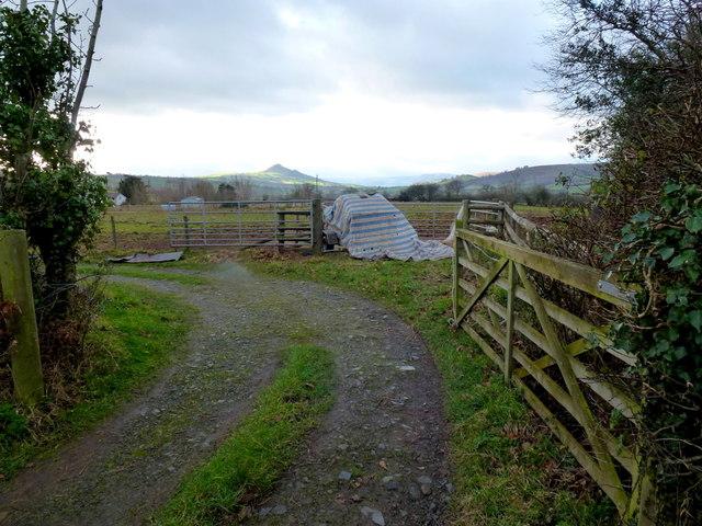 Crossway, Walterstone 2012