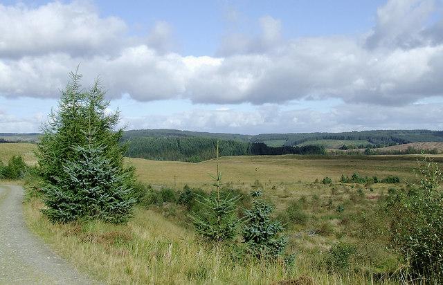 Elenydd landscape south-east of Soar-y-Mynydd, Ceredigion