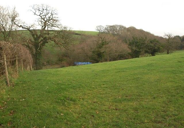 Valley near Wigdon Mill