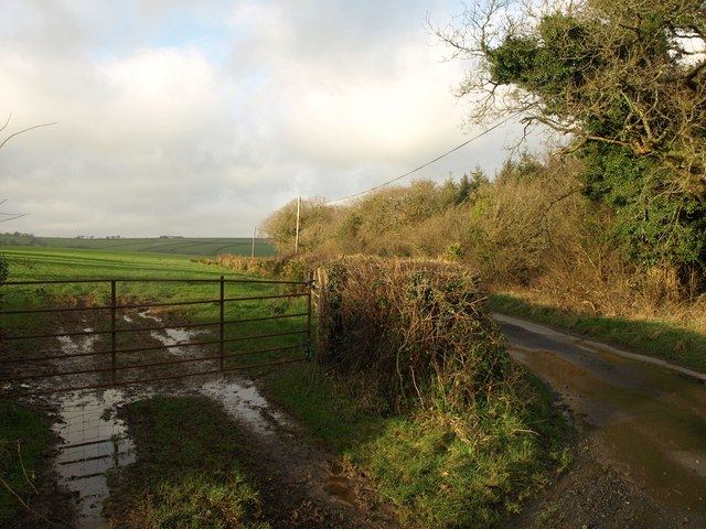 Field, lane and wood, Venn Down