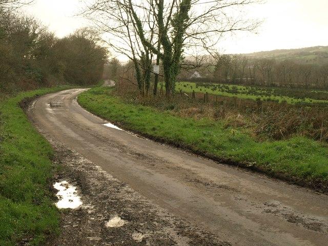 Lane at Thorndon