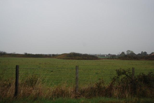 Farmland north of Molehill Rd