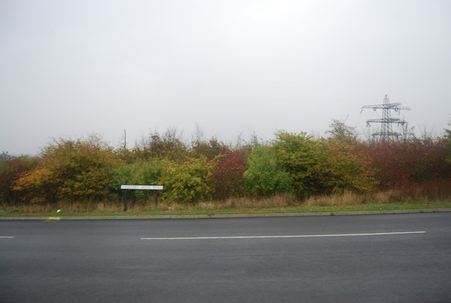 Thorndean Wood Road
