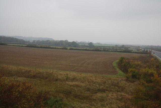 Farmland by the A299
