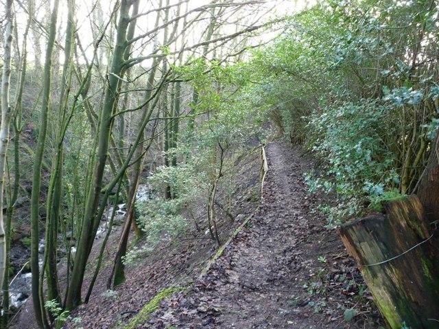 Footpath along Steeton Beck