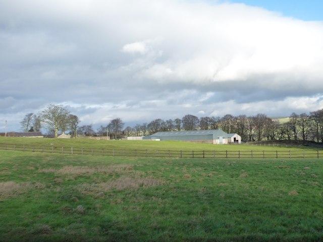 Fenced fields near Gate Farm