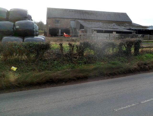 Mallybrook Farm, Welsh Newton