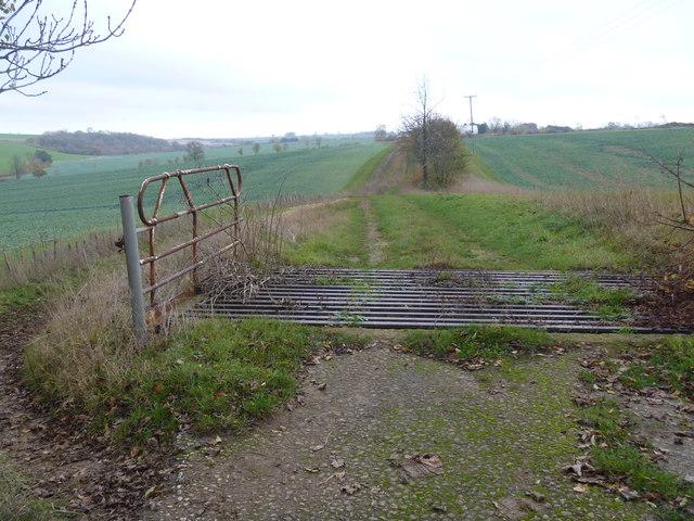 Redundant cattle grid