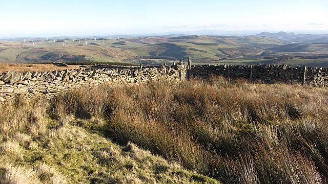 Dyke junction on Ferniehirst Hill